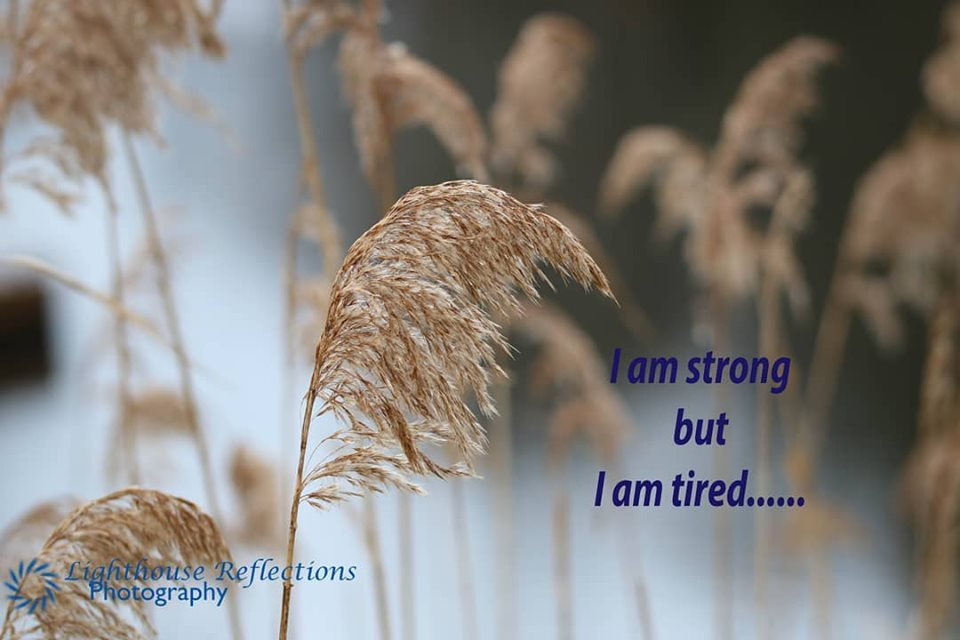 Reflections - Anne Ogden June 28.2019 Facebook Strong but tired
